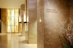 Elevator lobby (A. Wee) Tags: hilton 希尔顿 hotel 酒店 tokyo 东京 japan 日本 lobby elevator