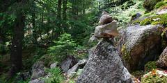 26052018-IMG_2282 (Steffan Photos) Tags: labresse grandest france fr randonnée vosges la bresse lac corbeaux bramont sechemer étang refuge union col vierge vieille montagne