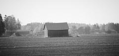IMG_0083 (www.ilkkajukarainen.fi) Tags: pohjanmaa blackandwhite monochrome mustavalkoinen visit travel traveling happylife lato barn wood puu bulding rakennus heinä suoja
