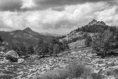 SIerra Nevada (Pepa Morente ( 2.200.000 de VISITAS )) Tags: blancoynegro montaña sierra sierranevada natural naturaleza belleza granada andalucía españa spain