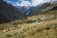 Robluthang camp - Gasa District - Snowman Trek - Bhutan (PascalBo) Tags: nikon d500 asie asia southasia asiedusud drukyul drukgyalkhap bhutan bhoutan འབྲུག་ཡུལ། འབྲུག་རྒྱལ་ཁབ་ snowman trek trekking hike hiking lunana himalaya himalayas jigmedorjinationalpark gasa tent bivouac camp campement outdoor outdoors pascalboegli moutain montagne