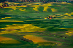 Rolling hills and red barns (A Camera Story) Tags: sunrise fields pacificnorthwest palouse stateparks steptoebutte steptoebuttestatepark washington sonya7rii sony70300mmf4556g