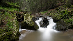 Deep Forest Waterfall (Nature Crate Photo) Tags: waterfall waterfalls landscape landscapephotography scenery forest woods longexposure nature naturephotography naturecratephoto stream