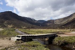 Bridge in the Glen