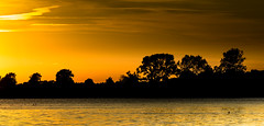 golden (Beppe Rijs) Tags: horizon landscape blue hour silhouette sky zoom tree deutschland germany schleswigholstein schlei wolken wolkendecke landschaft natur nature field feld horizont clouds farbig colored line linie rural ländlich color farbe sun sundown schleswig fjord sunset sonnenuntergang orange golden