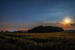 Dream of Summer (M-Z-Photo) Tags: adelshofen bayern deutschland de langzeitbelichtung nachtaufnahme mondlicht felder wald landschaft natur mond wolken himmel sterne