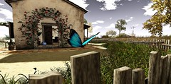 Sweet Hope, ethereal balm upon me shed (jana's Moments) Tags: butterfly home house wall wood door garden grass tree flower rose cloud cloudy sky sl second life secondlife virtual