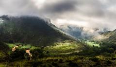 Verde primavera (mariusbucsa) Tags: primavera verde paisaje rio ríojalón jalón niebla mañana luz rayos huermeda nikkor35mm18g nikond5600 nikkor nikon calatayud aragón es españa