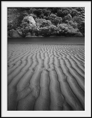 topography (Andrew C Wallace) Tags: ir infrared tidalriver wilsonspromontory victoria australia thephotontrap olympusomdem5 microfourthirds m43 blackandwhite bw sand pattern nature