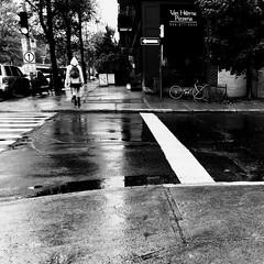 La rue va être propre... (woltarise) Tags: vanhorne avenue montréal outremont streetwise quartier passante pluie reflets bâtiments iphone7 h