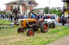 Fiat 211 (samestorici) Tags: trattoredepoca oldtimertraktor tractorfarmvintage tracteurantique trattoristorici oldtractor veicolostorico lapiccola