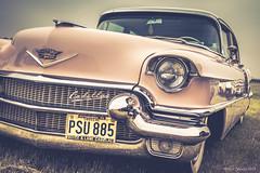 Hazy Pink Cadillac (yarns101) Tags: classic 50s show motor engine wheels speed cadillac chrome