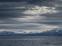 Telegrafbukta II Mai 2018 (Runar Eilertsen) Tags: tromsø troms norge nordnorge norway northernnorway telegrafbukta bukta sea hav himmel skye