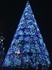(maycambiasso98) Tags: blue place visit christmas light lights tree plane spain españa travel viaje madrid