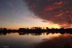 Nubes de fuego... (cienfuegos84) Tags: madrid polvoranca leganes sol sun amanecer sunrise sky cielo cloud nube naranja aves siluetas orange agua water