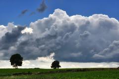 Le fascinant monde des nuages (Excalibur67) Tags: nikon d750 sigma contemporary globalvision 100400f563dgoshsmc paysage landscape nature nuages ciel cloud sky arbres trees