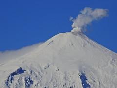 Volcán Villarrica (Mono Andes) Tags: andes chile chilecentral regióndelaaraucanía volcán volcano volcanoe volcánvillarrica molco