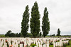 Tyne Cot Cemetery - Rows of Graves Among the Cedars (Le Monde1) Tags: ypres belgium memorial flandersfields lemonde1 cwgc war graves cemetery leper wwi salient battlefields d610 nikon tynecot headstones cedars