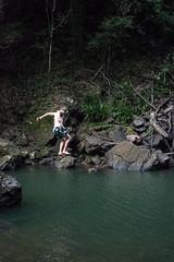 Australia_2018-205.jpg (emmachachere) Tags: subtropical trees hike waterfall boatride springbrook australia rainforest kanagroo animals koala brisbane boat lonepinekoalasanctuary