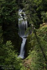 Dead Point Falls, June 2018 (Gary L. Quay) Tags: deadpointfalls dead point falls waterfall punchbowlfalls nodiving hoodriver hood river westfork west fork oregon water gary quay garyquay nikon d810