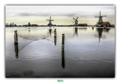 De ZAANSE SCHANS (2) (régisa) Tags: zaanseschans molen moulin windmill holland nederland paysbas netherlands zaan zaandam