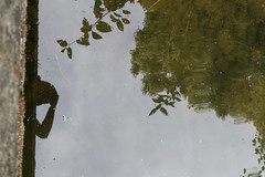 dereal (jillian rain snyder) Tags: selfportrait self reflection art leaves water me portrait reflect
