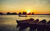 Sunset on Old Danube (PixelAndrei) Tags: danube delta romania rowmania river