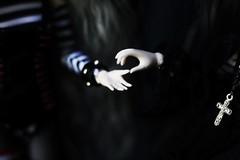 (hauntiing) Tags: pullip pullips doll dolls toy toys zuora laura blanche pullipdoll pullipdolls pullipphotography pullipzuora pulliplaura pullipblanche dollphotography toyphotography