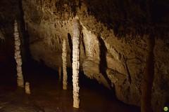 Demänovská Cave of Liberty (petrOlly) Tags: europe europa slovensko slowakei slovakia słowacja sk2018 nature natura przyroda cave jaskinia demänovskácaveofliberty demänovskájaskyňaslobody