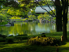 Tranquility (Eshke04) Tags: garden green silence quiet tranquility nature trees pomd water light reflection shadows architecture downtown edo tokyo calm peaceful healing contrast leaves spring landscape historical