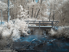 Gieselautal Albersdorf, Germany (peterkaroblis) Tags: infrarot infrared bäume trees bach creek brücke bridge