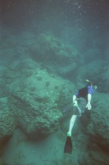 Snorkel Trip 2018 (kawehna) Tags: 35mm 800iso underwater disposable hawaii maui snorkeling beach honoluabay travel fujifilm