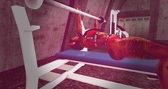 working out (Yazmin Kovain) Tags: firestormsecondlife gym sml