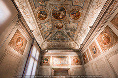 _biblioteca_marciana_venice_89n990005 (isogood) Tags: italy basilica chapel church venice christian religion gothic nave frescoes ceilings paintings marciani library bibliotecamarciani