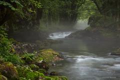 Potok Curak (MountMan Photo) Tags: potokcurak gorskikotar izletištezelenivir primorskogoranska croatia landscape voda water izmaglica