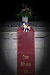 OTTO MAGNUS IMPERATOR (diwan) Tags: germany deutschland sachsenanhalt saxonyanhalt magdeburg stadt city place nacht night light flashlight dom cathedral magdeburgerdom grabmal tomb ottoi herzogdersachsen königdesostfrankenreichs kaiserdesheiligenrömischenreiches liudolfinger schatten playmobil playmobilfigures limitededition magdeburgerreiter kaiser emperor otto shadow architecture indoor langzeitbelichtung longexposures fotogruppe fotogruppemagdeburg sigma35mmf14dghsmart canoneos5dmarkiv canon eos 2018 geotagged geo:lon=11634994 geo:lat=52124655