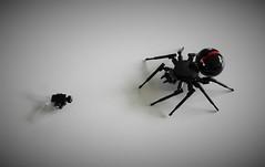LEGO Black Widow (Everblack.) Tags: lego spider legospider fly blackwidow housefly