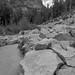 Yosemite Lake Trail