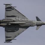RAF // Eurofighter Tyhoon // 29sqn thumbnail