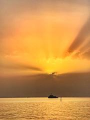 Golden sunset (basem_teacher) Tags: silhouette seaside sea beautiful discover inexplore adventure landscape photographer photography lighting lightroom iphoneshot moments scenery scene view sun sunset goldensunset goldenhour