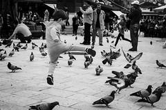 Youth Gone Wild (vladimirdjuric) Tags: monochrome bnw bw fuji fujifilm xt2 sarajevo child kid birds street