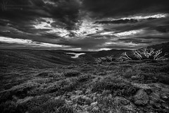 _MG_8946_Rocky Valley B&W_Flickr (Andrewhg photo) Tags: landscape photography sunrise falls creek alpine national park australia australian burnt trees mountains mountain sun sunlight pink warm altitude early morning wilderness remote clouds colour colourful dawn light cope vally canon 1740mm victoria view vibrant tranquil serene beauty beautiful wild exposure multiple emotion thoughts nature alone solitude quiet outdoor sky cloud 5d mark iii black white monochrome bw grayscale