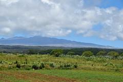 upcountry Big Island (heartinhawaii) Tags: waimea saddleroad bigisland roadsidehawaii hawaii upcountry landscape mountain nature nikond3300