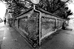 the brick wall (Drehscheibe) Tags: wall bricks nikonf2 ilfordfp4plus nikkor20mm blackwhite streets zweifarbig twotone analog