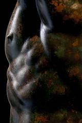 DSCF4363-2.jpg (Darren and Brad) Tags: bronze body italy italia principeellenistico italian nudiy form muscles museonazionaleromano bronzo beard hero naked heroic muscular palazzomassimoalleterme roma hunk rome man abs nipple nude armpit chest nationalromanmuseum huge ideal helensiticprince statuaritratto shape lips