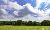 Little Paxton Pits Landscape (neilanderson1982) Tags: naturereserve nature landscape clouds sunny summer green grass photography flickr yellow sigma nikon sigma1750mm sky trees wideview beautiful detail happyplace happy handheld