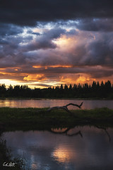 Phoenix (ErikStrotPhotography) Tags: sunset sunrise sonya6300 sony sigma16f14 bestoforegon oregonexplored oregonlandscape oregon traveloregon pdx willamettevalley wetlands landscape pnw sunlight oregonstatepark goldenhour sony3518