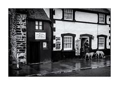 La petite maison de Conwy ! (bertranddorel) Tags: maison house architecture femme woman dogs chiens petite small bnw bw nb bn noiretblanc blackandwhite mono monochrome monocromo conwy paysdegalles grandebretagne europe lady fenêtre contrast nikon tamron ville town city ciutad street streetphoto