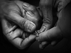Hands in BW (Grandpa@50) Tags: friendlychallenges