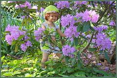 Sanrike ... ich muss mich besser verstecken, Paul hat mich schon gesehen ... (Kindergartenkinder 2018) Tags: gruga grugapark essen azaleen kindergartenkinder rhododendron sanrike annette himstedt